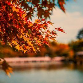 Tipps gegen den Herbstblues
